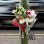 fiori strada