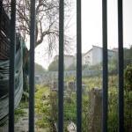 """Il sentiero sbarrato con tombe e lapidi ebraiche, nell'ambito Del """"Percorso Chiaym"""" della memoria ebraica al Parco del Cardeto (foto di Gianluca Mainiero)"""