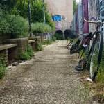 Corridoio con panchine infestate da erbacce e biciclette abbandonate