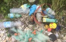 beach-litter